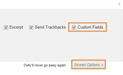 screen option EmbedIt Chèn code html, php vào post và page cho wordpress